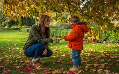 The joys of autumn